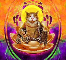 Buddha Kitty Cat by Magmata