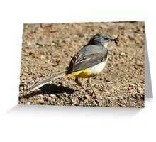 Yellow wagtail (Motacilla cinerea) with food Greeting Card