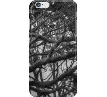 Polperro trees iPhone Case/Skin