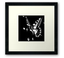 le papillon Framed Print