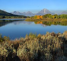 Morning Reflections, Oxbow Bend  by Stephen Vecchiotti
