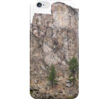 upper columbia gorge iPhone Case/Skin