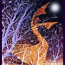 Dance to the light of the moon by Susan Ringler