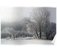 Foggy Frosty Morning Poster