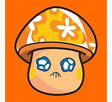 Feelzer Mushroom Photographic Print