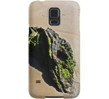 GlassHouse Rocks #2 Samsung Galaxy Case/Skin