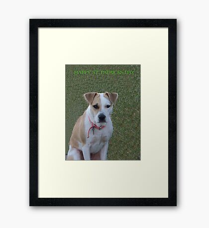 Jerzy says i'm not Irish  Framed Print