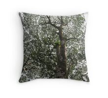 Black Lace on a Fading Sky Throw Pillow