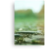 cobbles Canvas Print