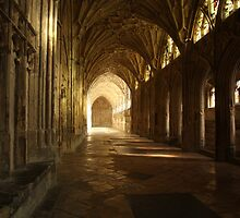 The Cloisters in Gloucester Cathedral by Jeff  Wilson