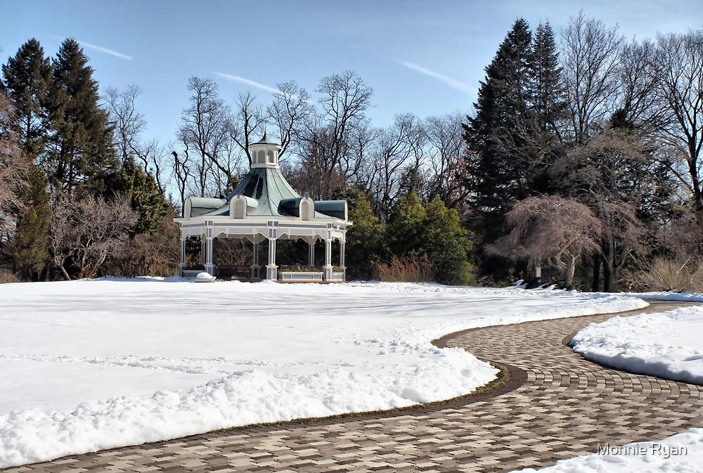 Snow Path-ology by Monnie Ryan