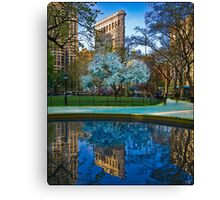 Spring Arrives In Madison Square Park Canvas Print