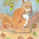 Squizzy Squirrel Gets Ready For Winter by Briony Ryan