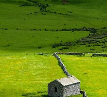 Barn Littondale Yorkshire Dales by Nick Jenkins