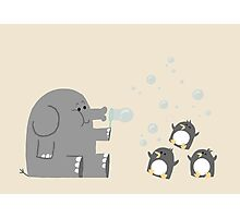 Elephants & Penguins love bubbles. Photographic Print
