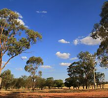 Images of Australia by Yvonne Kirk