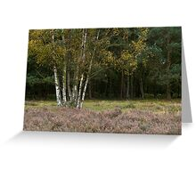 Cannock Chase Staffordshire England Greeting Card