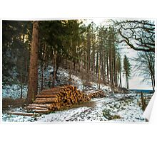 Winter Logs Forest of Dean Poster