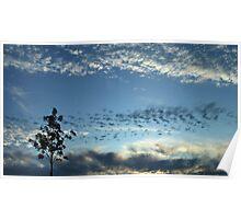 Cloudscape at Dusk - Caldecotte Lake, Milton Keynes Poster