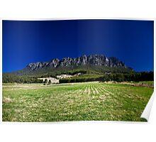 Mt. Roland Poster