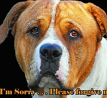 Boxer Dog Card by Julia Harwood