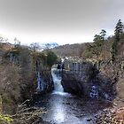 High Force by Reinhardt