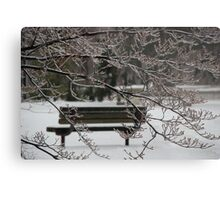 Winter Bench Metal Print