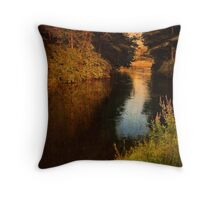 Stream at Bulls Bridge Throw Pillow