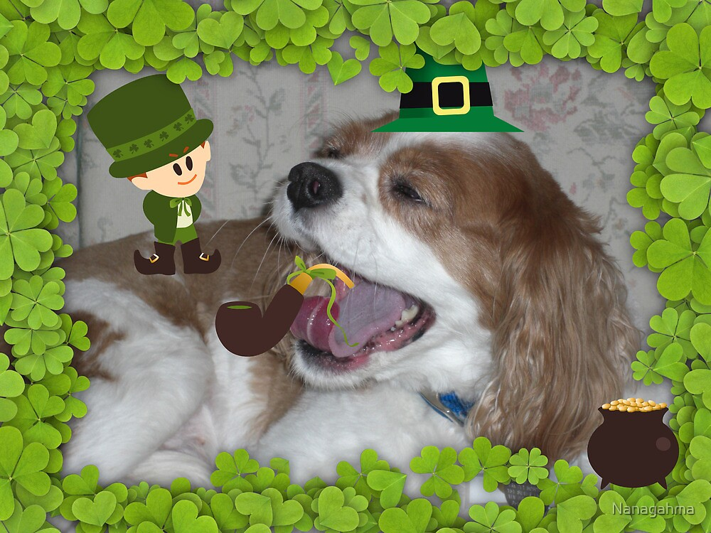 What's all this blarney about EVERYONE being Irish on St. Paddy's Day? by Nanagahma