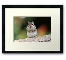 Praying For Peanuts Framed Print
