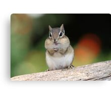 Praying For Peanuts Canvas Print