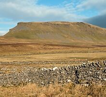 Pen y Ghent Yorkshire Dales by Nick Jenkins