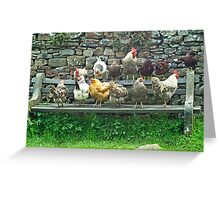 Hens on a bench Greeting Card