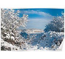 Winter Countryside 1 Poster