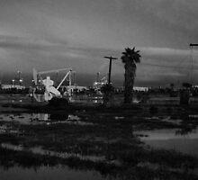 Oil Fields by Tom-Sky