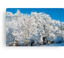 Winter Snow on Trees Canvas Print