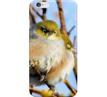 Snuggle Time - Silvereyes - NZ iPhone Case/Skin