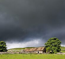 Sunlit Barn near Malhamdale by Nick Jenkins