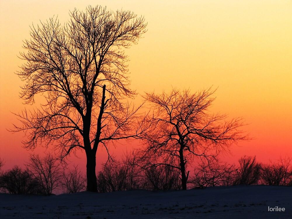 Strawberrry Vanilla Skies by lorilee