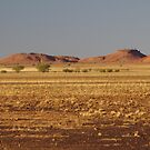 Outback Queensland  by Liz Worth