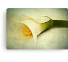 Blurred Canvas Print