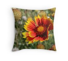 Blanket Flower, Indian Blanket~Gaillardia Aristata  Throw Pillow