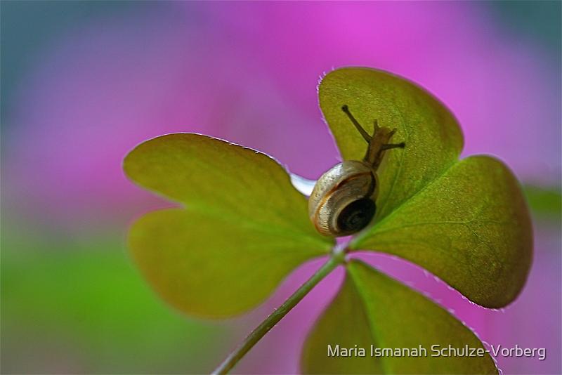 Heartfelt nature by Maria Ismanah Schulze-Vorberg