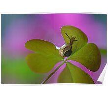 Heartfelt nature Poster