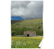 Littondale Flower Meadow Poster