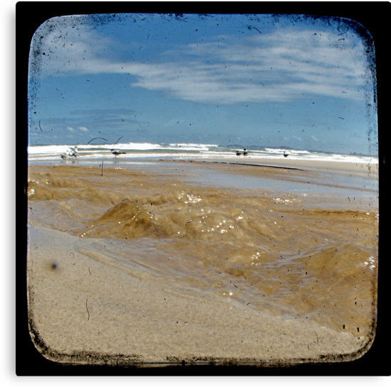 Freshwater - Through The Viewfinder (TTV) by Kitsmumma