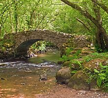 Hisley Packhorse Bridge Dartmoor by Nick Jenkins