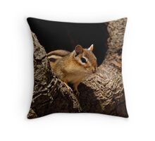 Chipmunk in tree hole - Ottawa, Ontario Throw Pillow