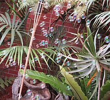 bubble fun in the ferns by Elyse Clarence