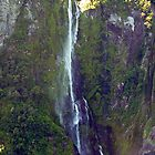 Water in Free-Fall Milford Sound NZ by Keith Richardson
